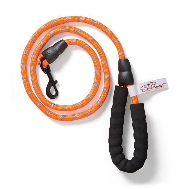 leash-orange